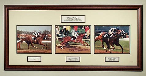 As a matter of fact, the genuine photographs of Secretariat are very limitedly left behind with us nowadays.