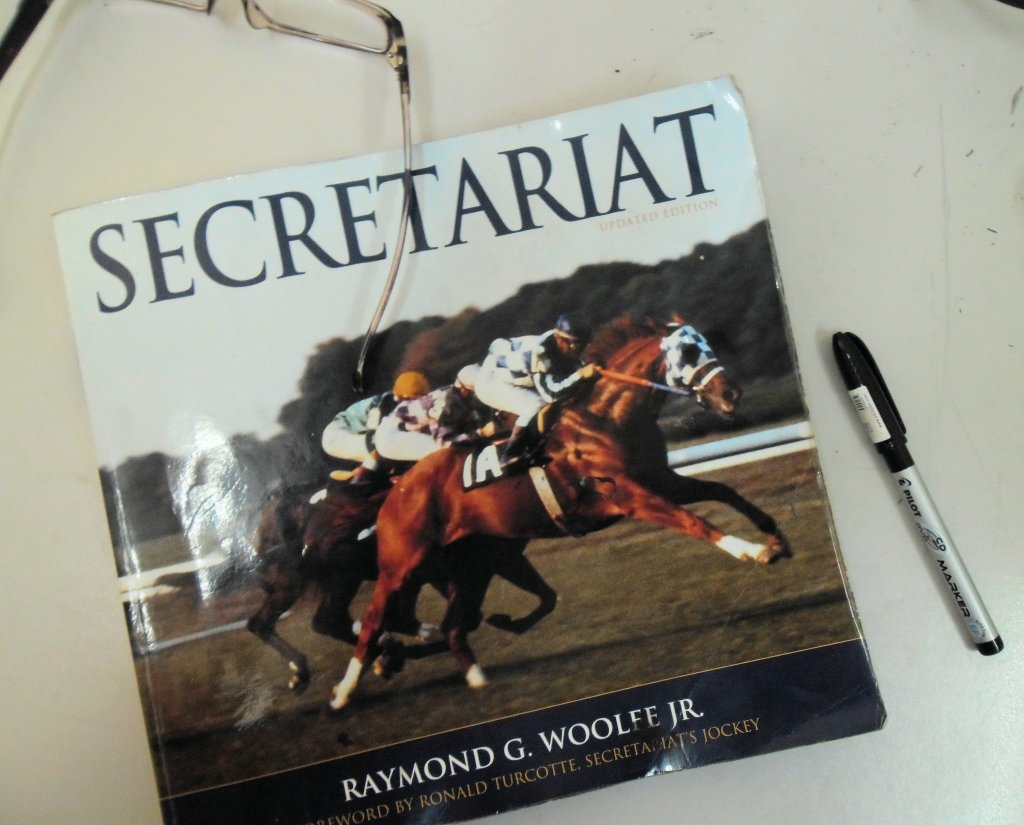 Secretariat appeared to me once again in the form of a book