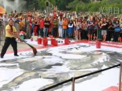 12x6公尺水墨畫‧潘瑞全駿馬創紀錄