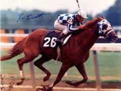 Secretariat, King of Horses.