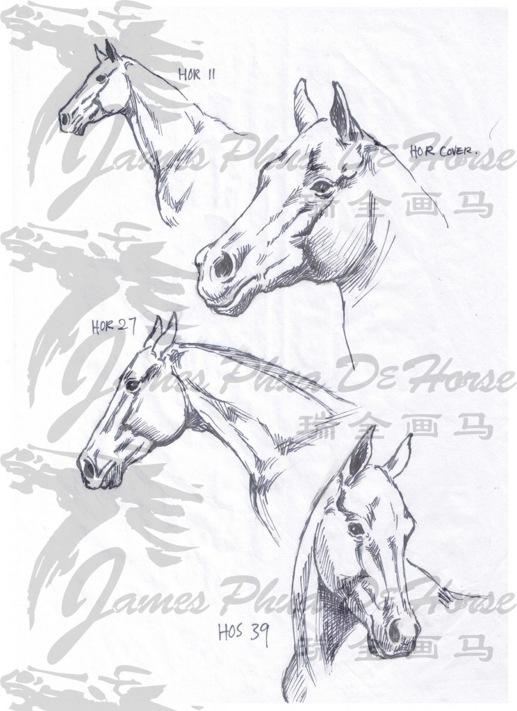 Horse sketch by James Phua 01