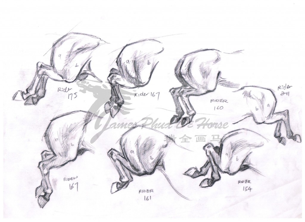 Horse sketch by James Phua 03