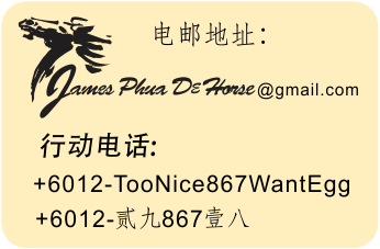chinese contact info