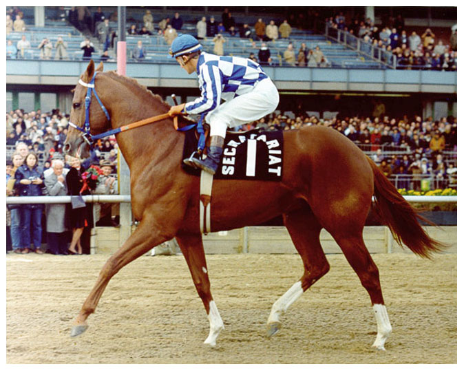 Farewell-Secretariat Day at Aqueduct, November 6, 1973