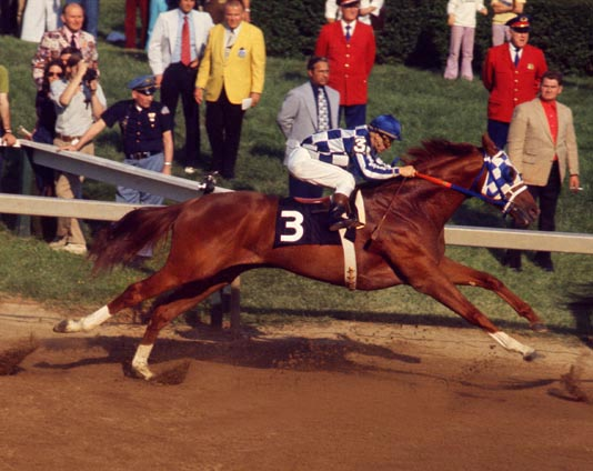 Secretariat begins his sensational looping rush at Preakness Stakes