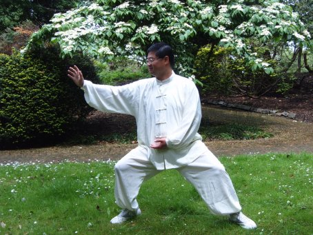 """Qi"" in Chinese Martial Art"